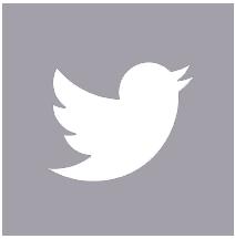 Twitter Tamiluz